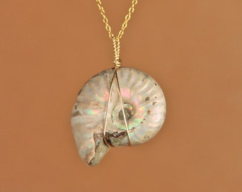 Opal necklace - fossil necklace - ammonite necklace - shell necklace - an opalized ammonite wire wrapped onto a 14k gold vermeil chain