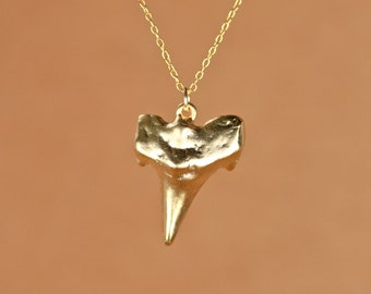 Shark tooth necklace - gold shark tooth necklace - beach necklace - a 22k gold overlay sharks tooth on a 14k gold vermeil chain