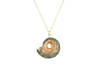 Ammonite necklace - fossil - shell necklace - a fossilized ammonite shell wire wrapped onto 14k gold filled or sterling silver chain - SALE