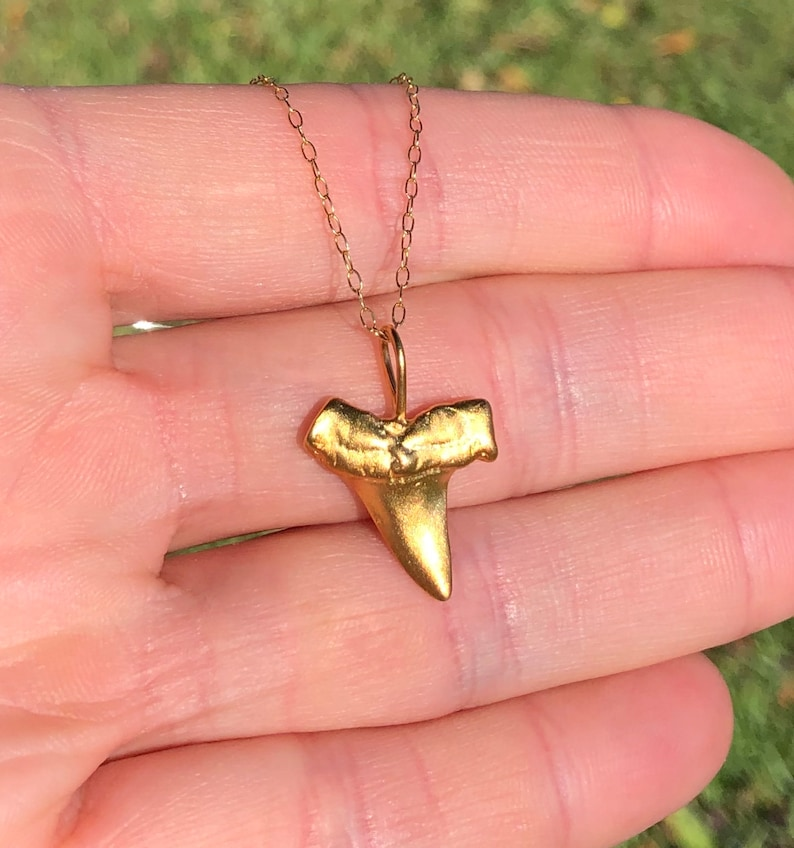 Shark tooth necklace gold shark tooth pendant beach image 0