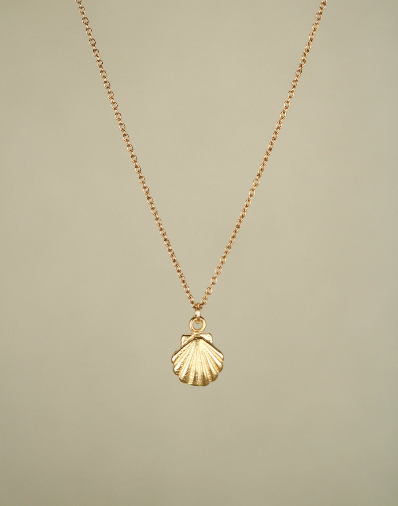 Gold shell necklace  tiny shell necklace  sea shell necklace image 0
