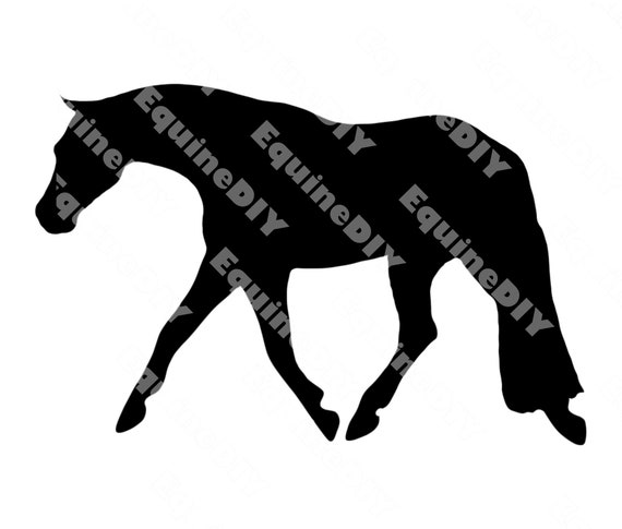 Trotting Standing Cantering Galloping customization t shirts stall signs show awards For logos mugs 5 Gypsy Vanner Horse clip art