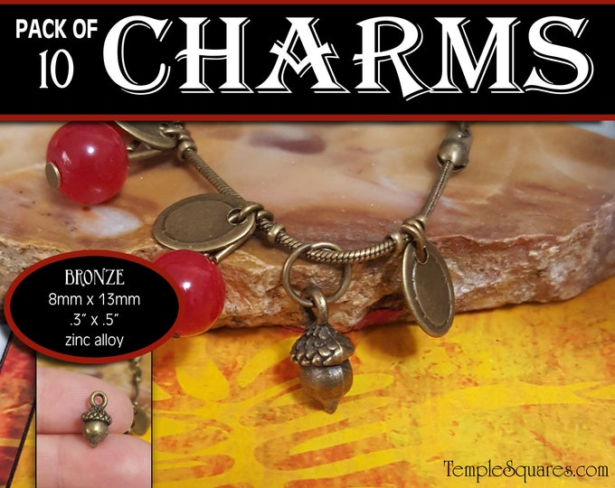 Acorn Charm - Pack of 10 Charms - Girls Camp Secret Sister Gifts Charm Bracelet Jewelry Supplies 2019 Come Follow Me New Beginnings Oak Tree