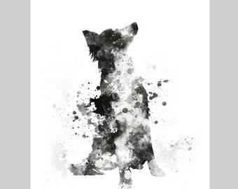 Border Collie ART PRINT Illustration, Dog, Pet, Home Decor, Wall Art, Animal, Gift