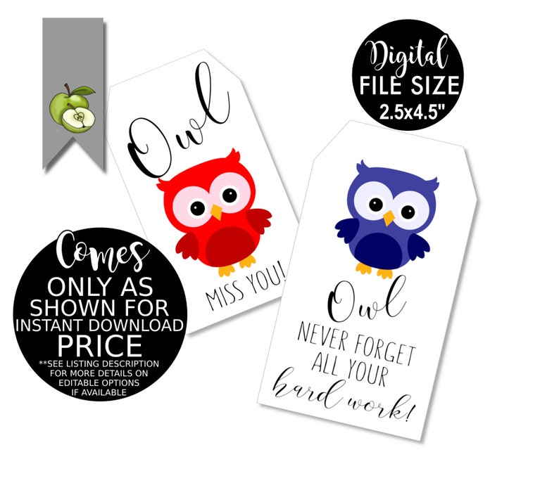 picture about Owl Miss You Printable titled trainer owl pass up on your own present tag, pink white and blue, Trainer Appreciation, workforce appreciation 7 days, thank oneself tag, reward tag, Printable