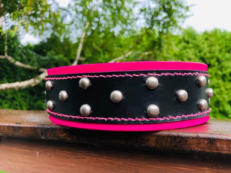 Wide  Vegan Leather  choice of hardware type and size  handmade  waterproof 25mm Caribbean Blue Biothane Dog Collar  1