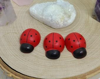 Lady Bug Wooden Magnets, Ladybug Magnet,Wood Magnet Set,Ladybug Magnet Set, Lady Bug Kitchen Decor, Ladybug Fridge Magnet, Fridge Magnet Set