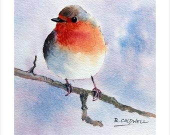 Fine art print - Robin