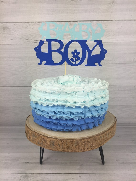 Baby Boy Bunny Cake Topper Bunny Baby Shower Boy Baby Shower Cake Topper Boy Bunny Shower Easter Baby Shower Spring Baby Shower By Kt Blue Creations Catch My Party