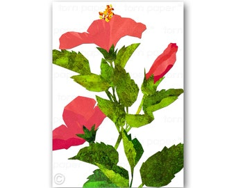 """Hibiscus Flowers - 5""""x7"""" Tropical Card - also available as a Print with a Free Mat - Great gift for a tropical wedding (CFLO201414)"""