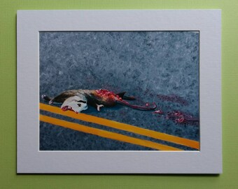 "Fine Art Print ""Still Life with Possum II"" 6x8 matted to 8x10"