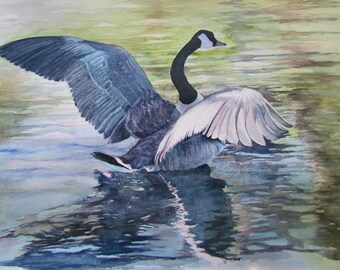 """Fine Art Print of original watercolor """"Lifting Off"""" by Sarah Buell Dowling"""