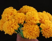 Day of the Dead 50 Yellow Marigolds, Dia de Los Muertos, Mexican Flowers, Crepe Paper Flowers, Wedding Decorations, Cinco de Mayo, Fiesta