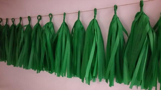 Only 13 99 Philadelphia Eagles 20 Tassel Tissue Paper Garland