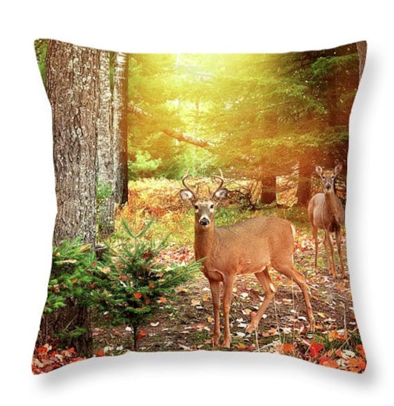 Admirable Deer Buck Fall Foliage Throw Pillow Autumn Throw Pillows Hunting Camp Decor Couch Pillow Euro Sham Bed Pillows Home Decor Pillow Inzonedesignstudio Interior Chair Design Inzonedesignstudiocom