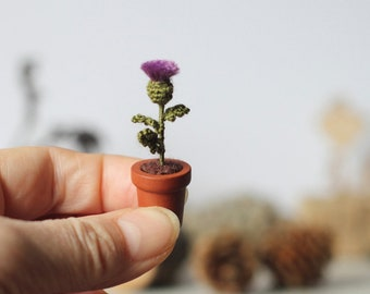 Thistle in a Pot Miniature Crochet Flower Plant, Scottish Thistle Dollhouse Fairy Garden, Collectable Scotland's National Aries Flower Decor