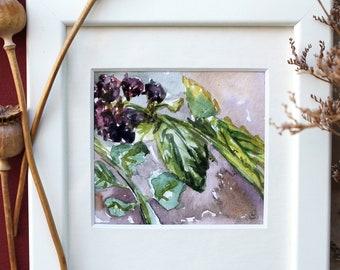 ORIGINAL watercolor painting, plant painting, blackberry painting, Autumn watercolour painting, housewarming gift foodie