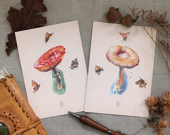 Postcard set, Autumn postcard set, toadstool postcard set, Autumn art, vintage botanical stationery, toadstool illustration