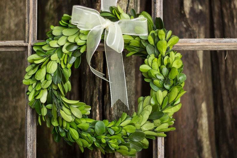 Dried Flowers Preserved 8 Boxwood Boxwood Boxwood for Wedding Natural Boxwood Wreath With Ribbon Boxwood Etsy Boxwood Wreath