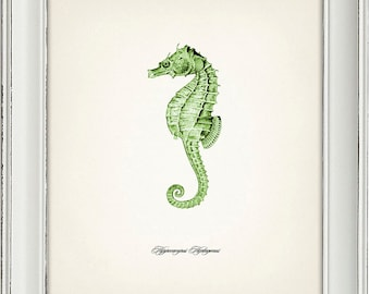 Green Seahorse Print 1 - 8x10 - Fine art print of a vintage natural history antique illustration