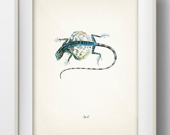 Lizard 4 - RE-07 - Fine art print of a vintage natural history antique illustration. 8x10 11x14 12x18 13x19 RE-07