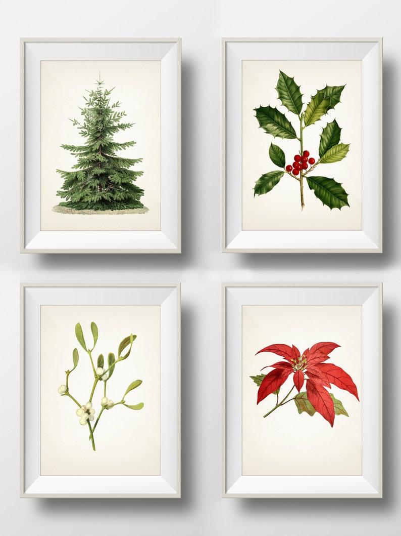 Christmas Holiday Botanical Prints Set Of 4 Holly Etsy
