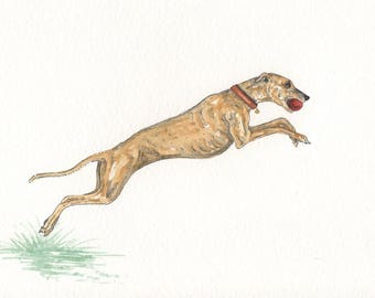 ORIGINAL PAINTING of a Whippet greyhound ... a Watercolor Painting