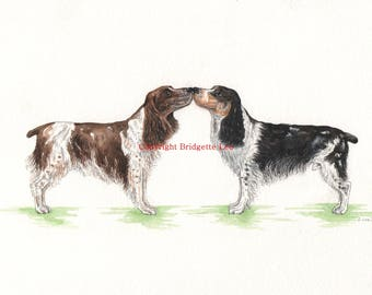 ORIGINAL PAINTING of a Spaniel dog ... a Watercolor Painting