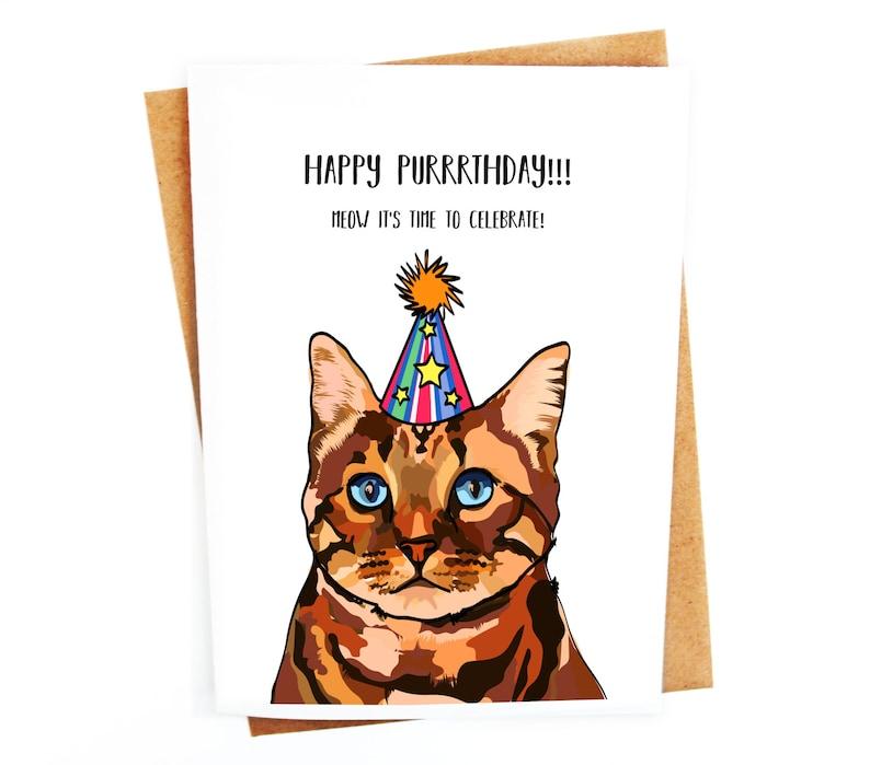 Funny Cat Illustration Birthday Greetings Card Humorous