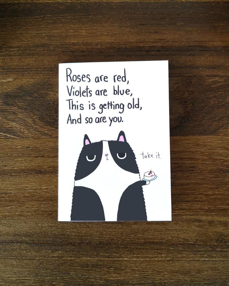 Funny Birthday Cat Card // Happy Birthday Cat Card // Rude image 0