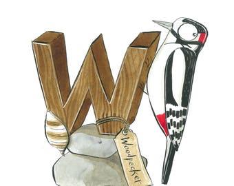 Woodpecker & Whelk