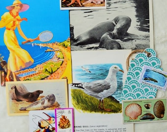 Funny Seagulls Sun 4x Paper Napkins for Decoupage Craft