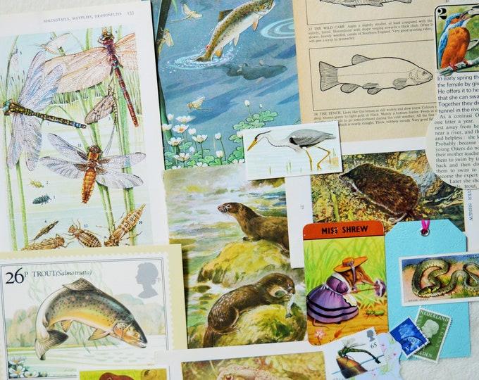 Journal Kit Scrap Pack Craft Pack Wildlife of RiversStreams Paper Ephemera Pack