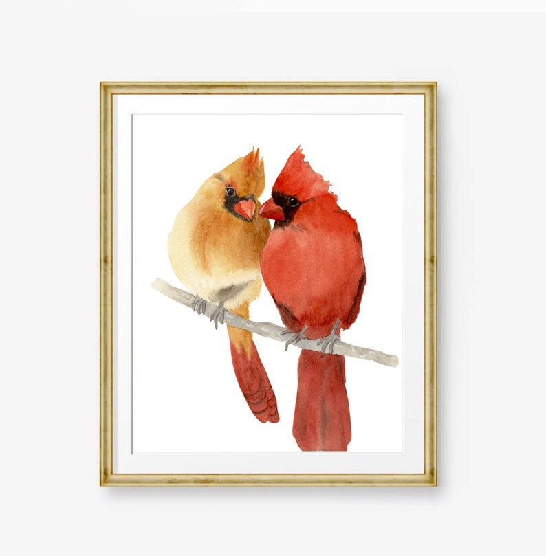Useful Male Cardinal Original Watercolor Painting Paintings 8 X 10 Inches
