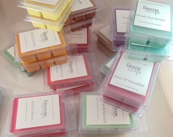 Soy Wax Melts  - Hundreds of Scents available - Wedding Favors - Baby Shower Favors - Bridal Shower Gifts - Hostess Gifts - Fund Raisers