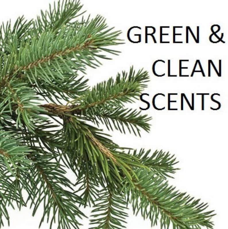 GREEN & CLEAN Essential and Aromatic Oils  Eucalyptus  image 0