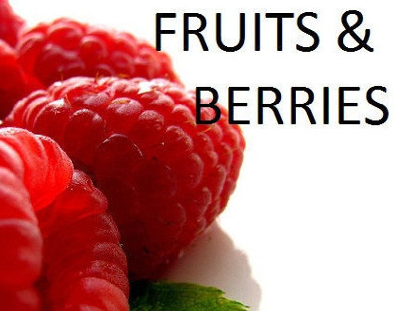 FRUIT & BERRIES Essential and Aromatic Oils  Strawberry image 0