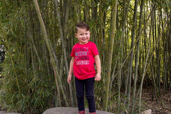 Little Mister Heart Breaker -  Valentine's Day Embroidered Shirt - Girls Valentine's  Shirt - Boys Valentine's Shirt - February 14
