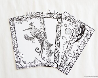 Coloring Book For Adults Blank Postcards