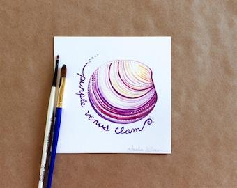 "Original Gouache Purple Venus Clam Seashell Miniature Painting on Bristol Board - ""31 Days of Seashells"" Collection"