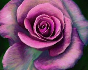 DIGITAL Rose Drawing