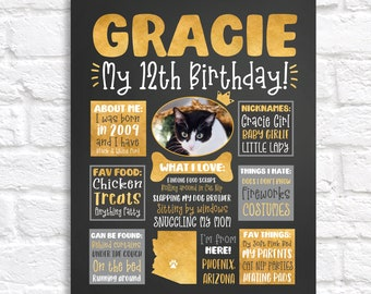 Cat Birthday Art, Personalized Poster for Cat or Dogs Bday, Any Year Celebrating, Custom Cat Lady Gifts Cat Lovers, Cat First Birthday Stats