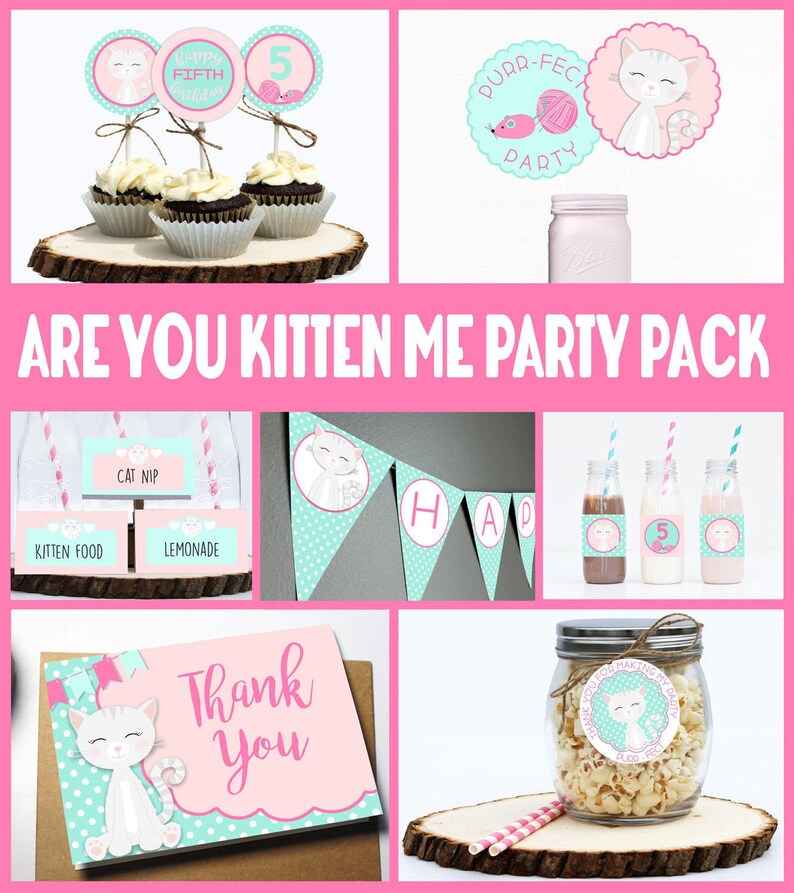Are You Kitten Me Cat Birthday Party Pack PERSONALIZED