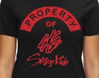 090ce756 Property Of STRAY KIDS Kpop T-shirt Bang Chan, Woojin, LeeKnow, Changbin,  Hyunjin, Han, Felix, Seungmin, and I.N. Glitter ink printed frt/bk