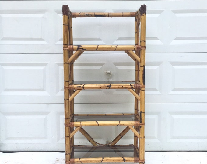 Boho Modern Bamboo & Glass Bookcase