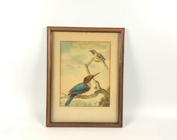 Vintage Painting of Birds in a Tree- Framed with Glass