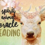The Spirit Animal Oracle Intuitive/Psychic Video Reading!