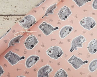 Pudgy Pallas' Cats Gift Wrap / Wrapping Paper