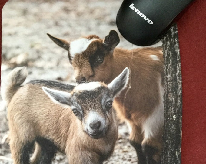 Mouse Pad featuring Two baby goats from the Two Old Goats Farm.  Everyone needs a mouse pad with cute goats