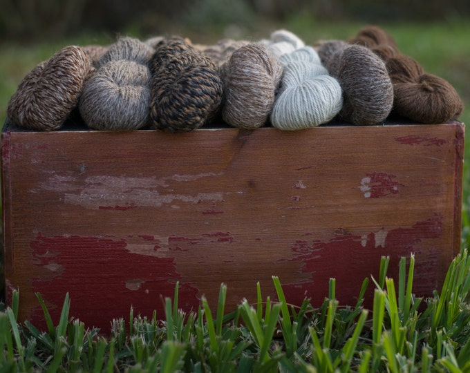 100% Alpaca yarn.  146 - 154  yards per skein - 2 ply.  Natural color - no dyes - fiber from the alpacas on Two Old Goats Farm